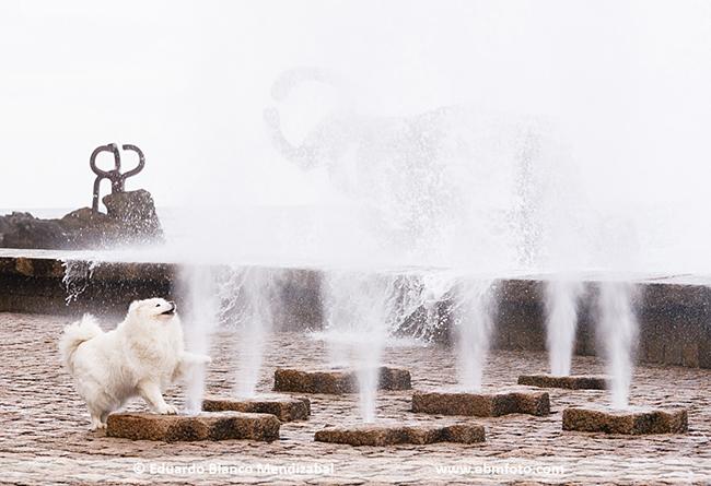 Donostia por Eduardo https://ebmfoto.com/