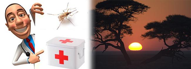 seguro africa iati seguros