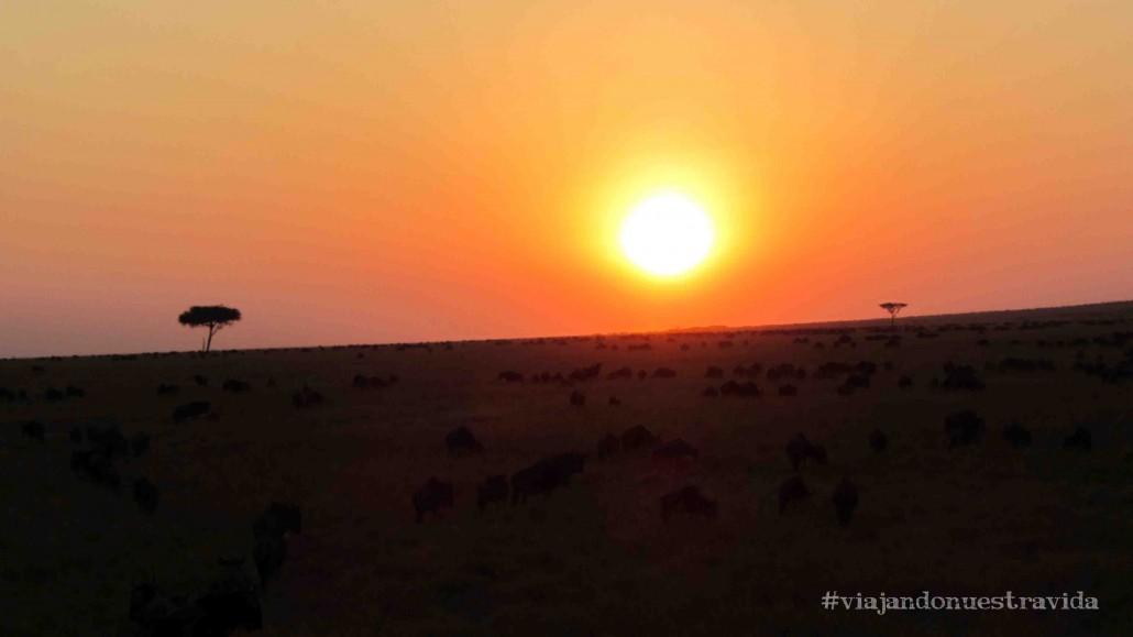 Masai Mara África