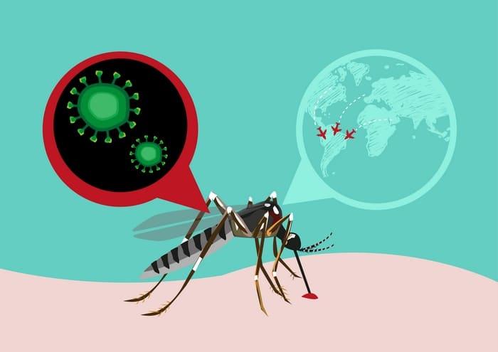 Vacunas para Sudamérica