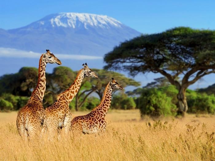 Itinerario por Tanzania