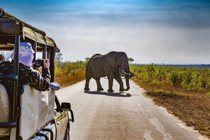 Itinerario de viaje a Sudáfrica