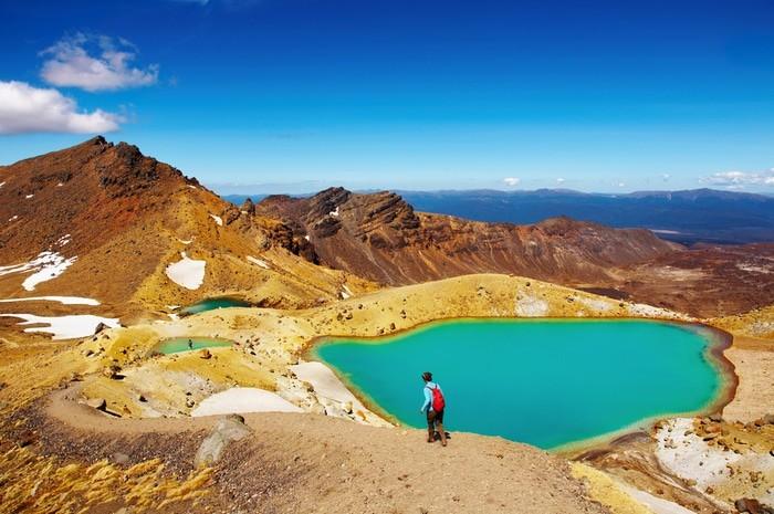 Seguro de viaje Working Holiday Visa Nueva Zelanda