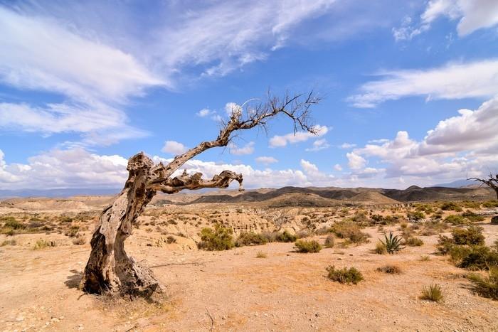 Desierto de Tabernas, Almería