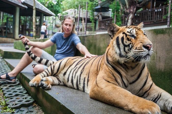 Tiger Temple Tailandia
