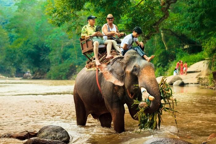 montar en elefante