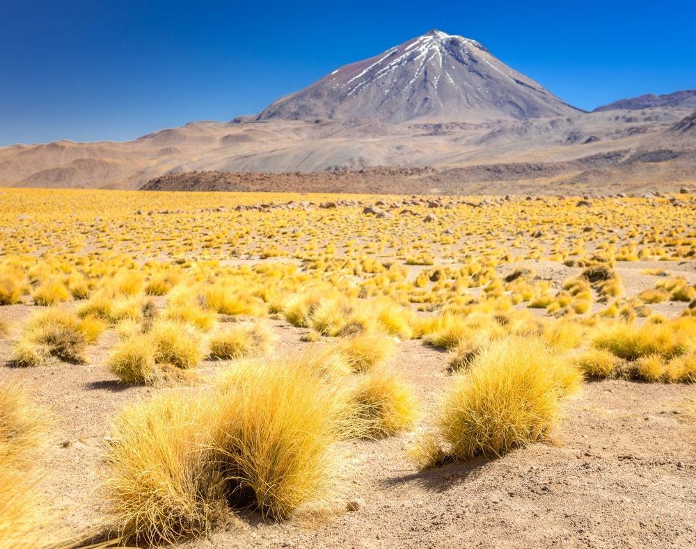 visitar Atacama