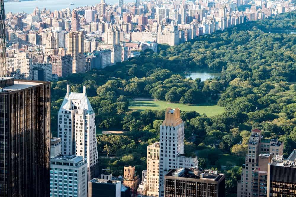 mirador Top of the Rock, vistas a Central Park