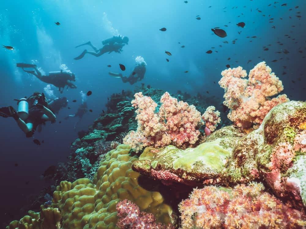 mejor buceo en Tailandia