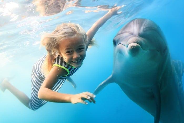 expectativa vs realidad turismo con animales