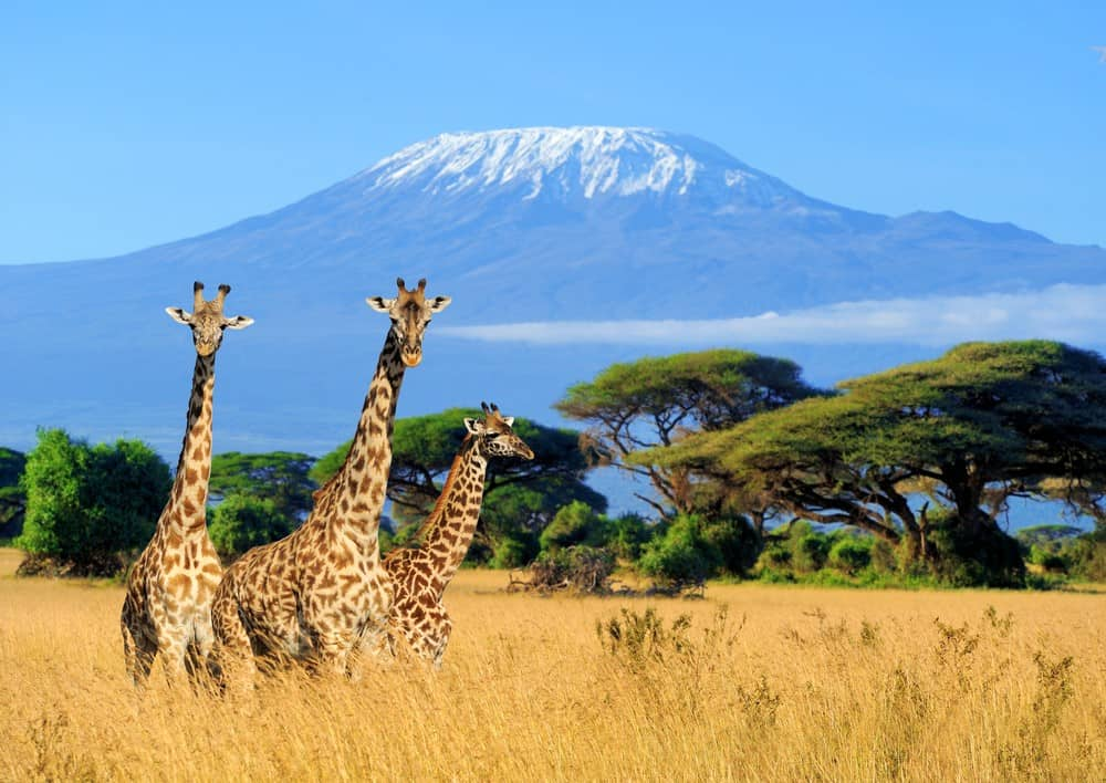 itinerario de viaje a Kenia