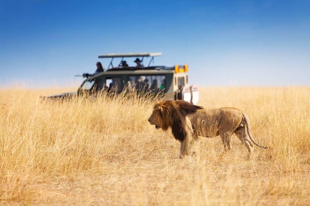 Reserva Nacional de Masai Mara Kenia