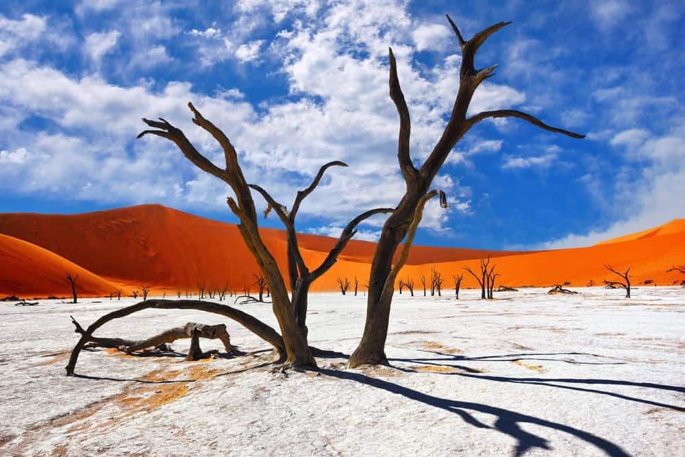 seguro de viaje para Namibia