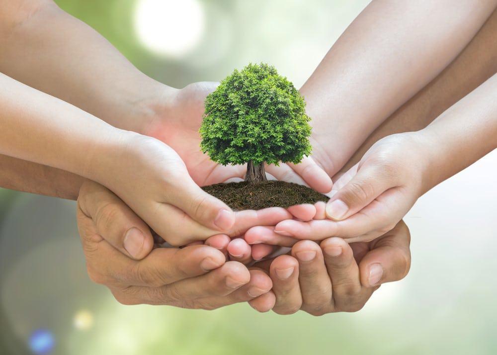 medioambiente y familia