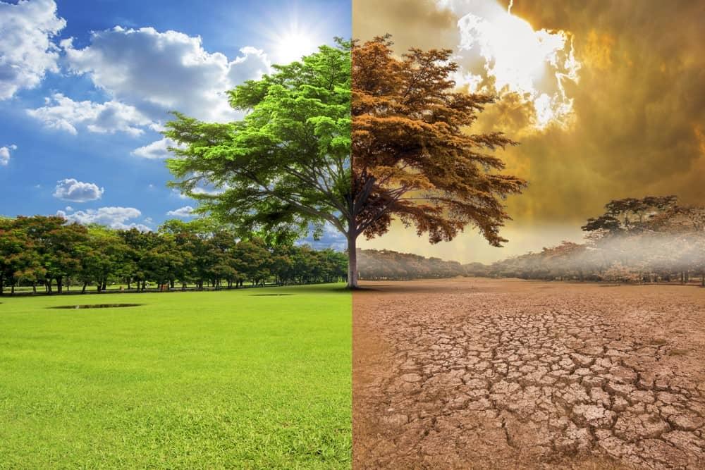 El Cambio Climático Causas Y Consecuencias Iati Seguros