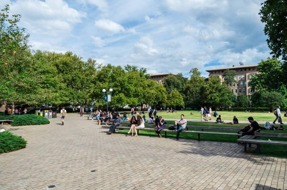 después de la selectividad, universidad