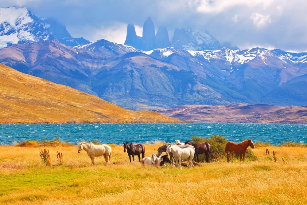 consejos para hacer el Trekking de Torres del Paine