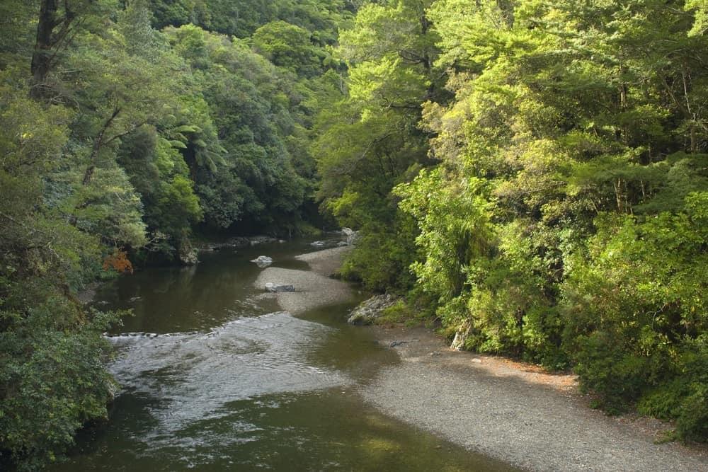 localización de Rivendel en el Señor de los Anillos, Nueva Zelanda