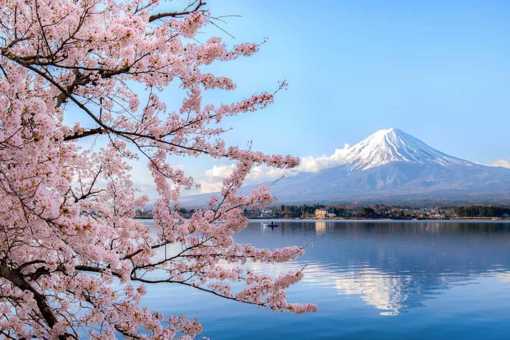 excursión a Kawaguichigo desde Tokio