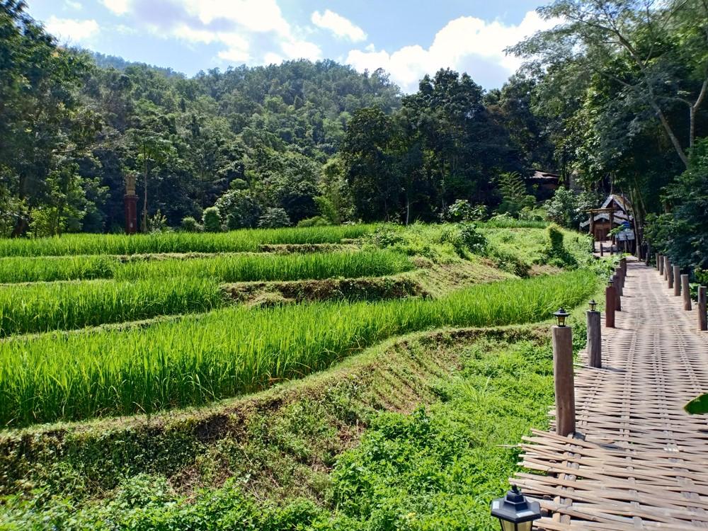 el bamboo bridge de Pai