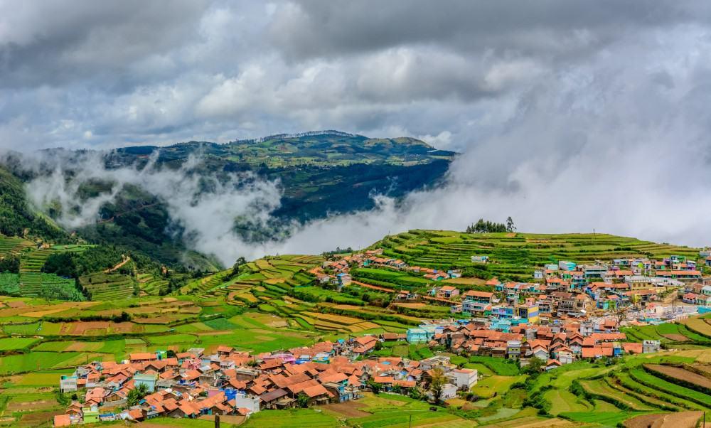 Trekking en Nilgiris, India