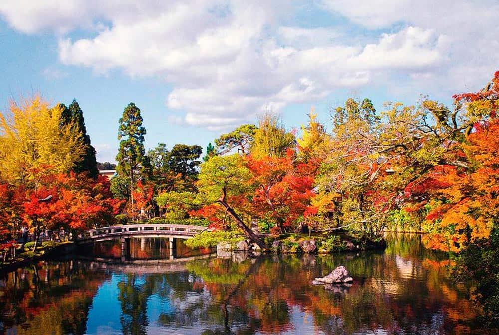 que hacer en Nara