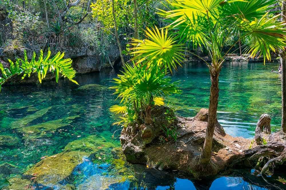 Cenotes que ver en Riviera Maya