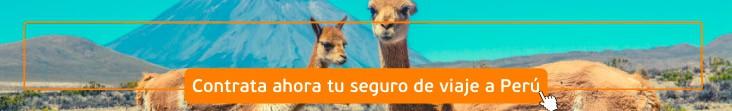 seguro de viaje a Perú