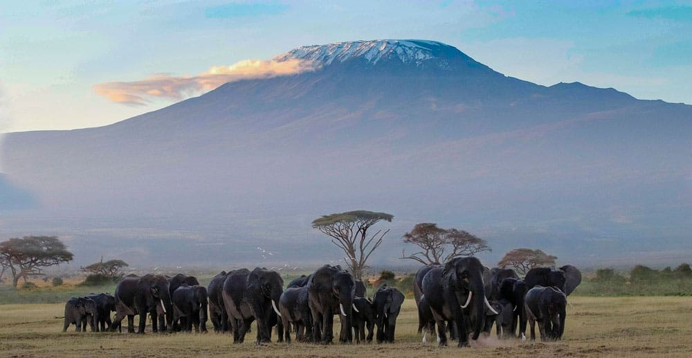 Es seguro viajar a Tanzania y Zanzíbar