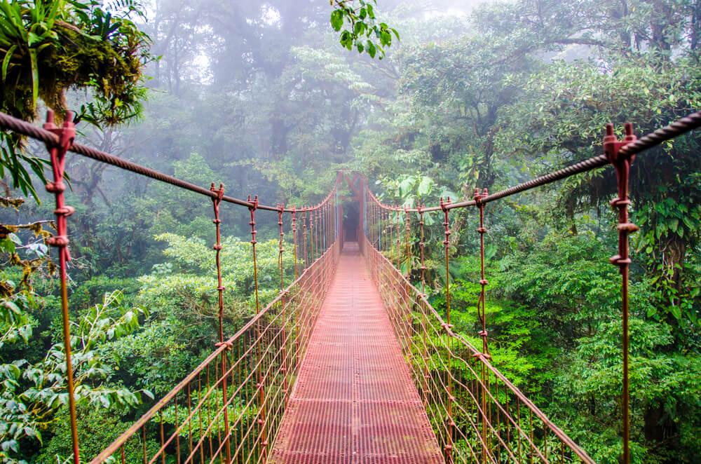 ponte em monteverde na costa rica