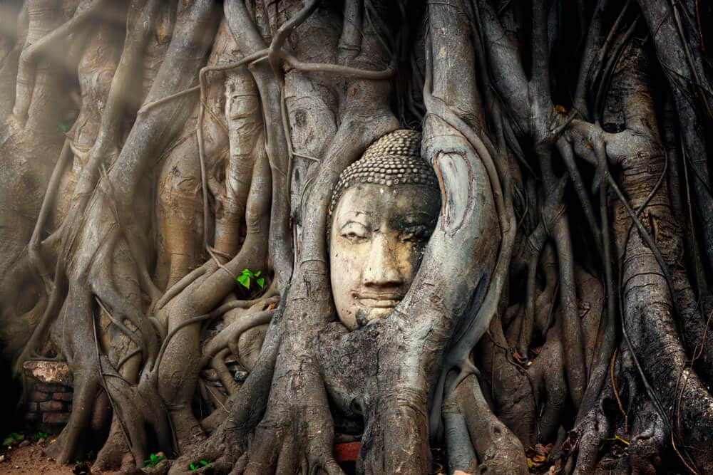 pormenor do templo de ayutthaya na tailandia