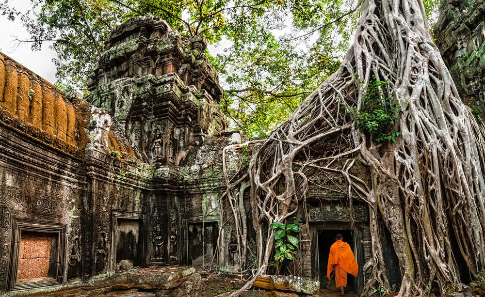 monge caminha pelas ruinas de angkor wat