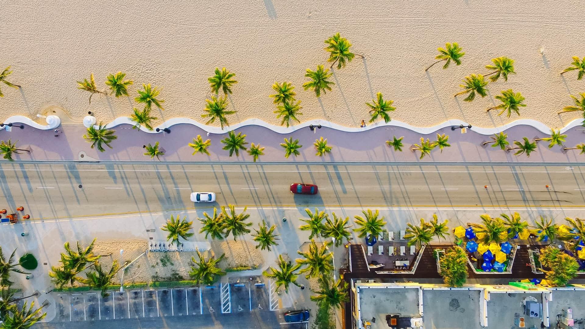 palmeiras em miami