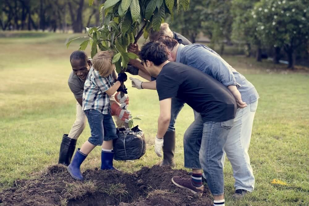 jovens turistas plantam uma arvore