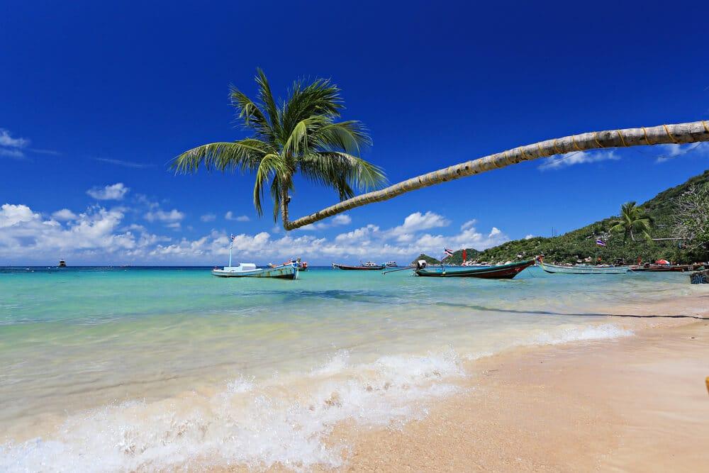 praia tipica da tailandia, com palmeiras e barcos