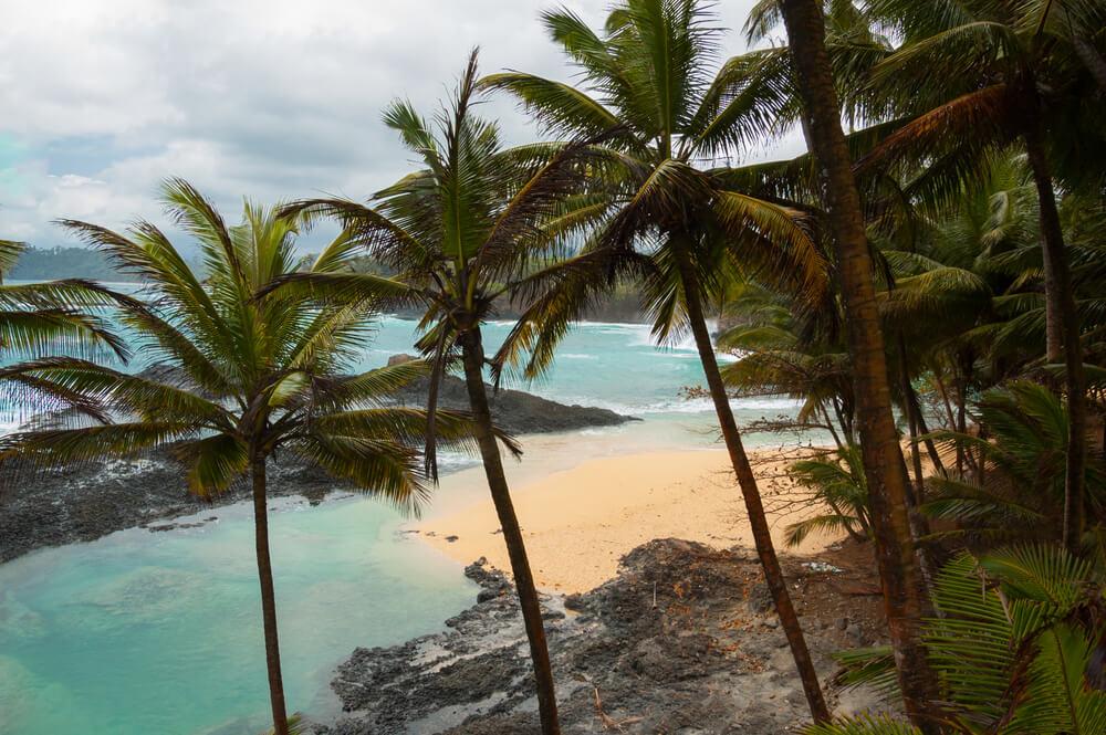praia piscina com aguas verdes e palmeiras