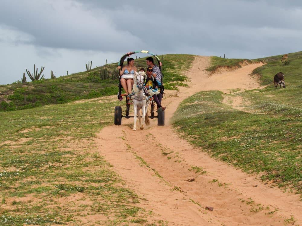 familia passeia numa charrete puxada por um cavalo em jericoacoara