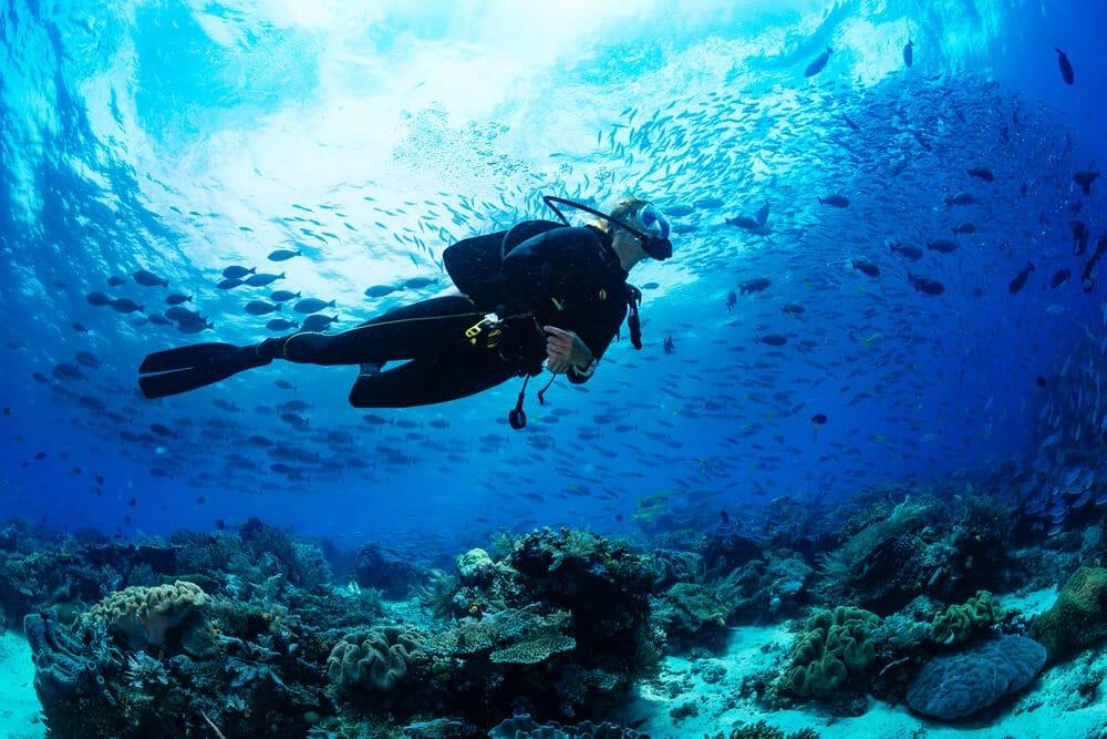 mergulhador debaixo de agua na indonesia