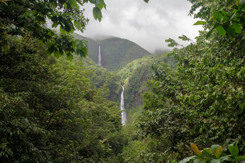 queda de agua e floresta do parque nacional de guadaloupe