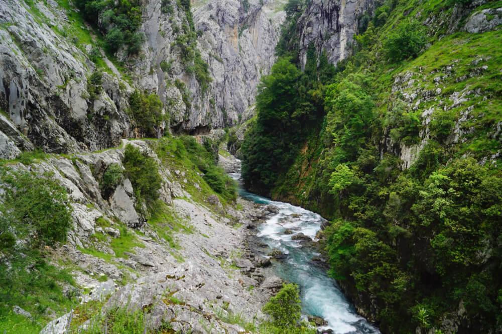 parte do trilho da ruta del cares com vegetação e o rio cares