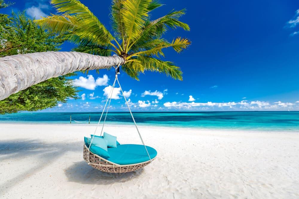 cadeira de baloiço pendurada numa palmeira nas maldivas