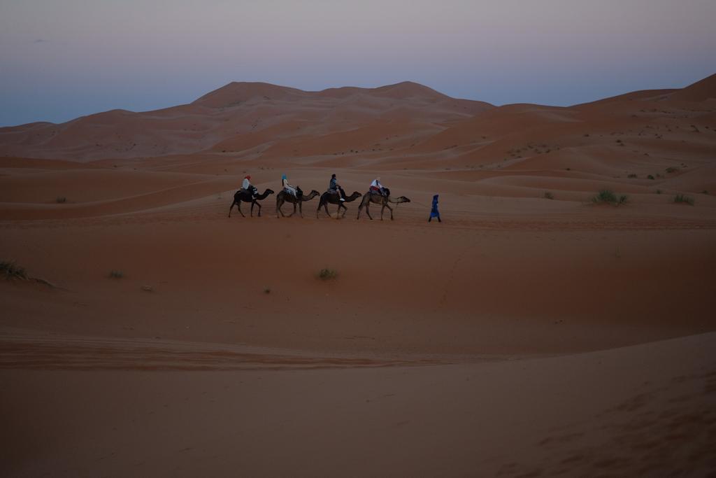 caravana de camelos no sahara