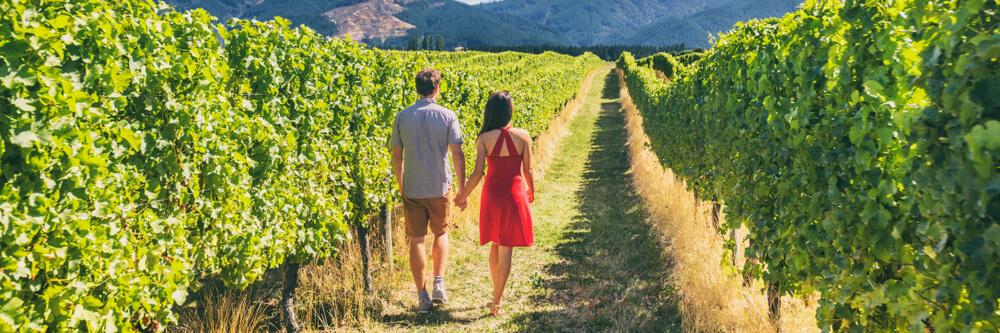 casal passeia pelo meio das vinhas no douro