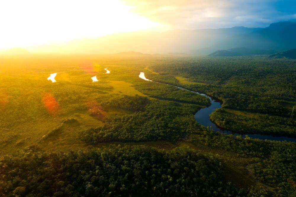 panoramica da floresta amazónica