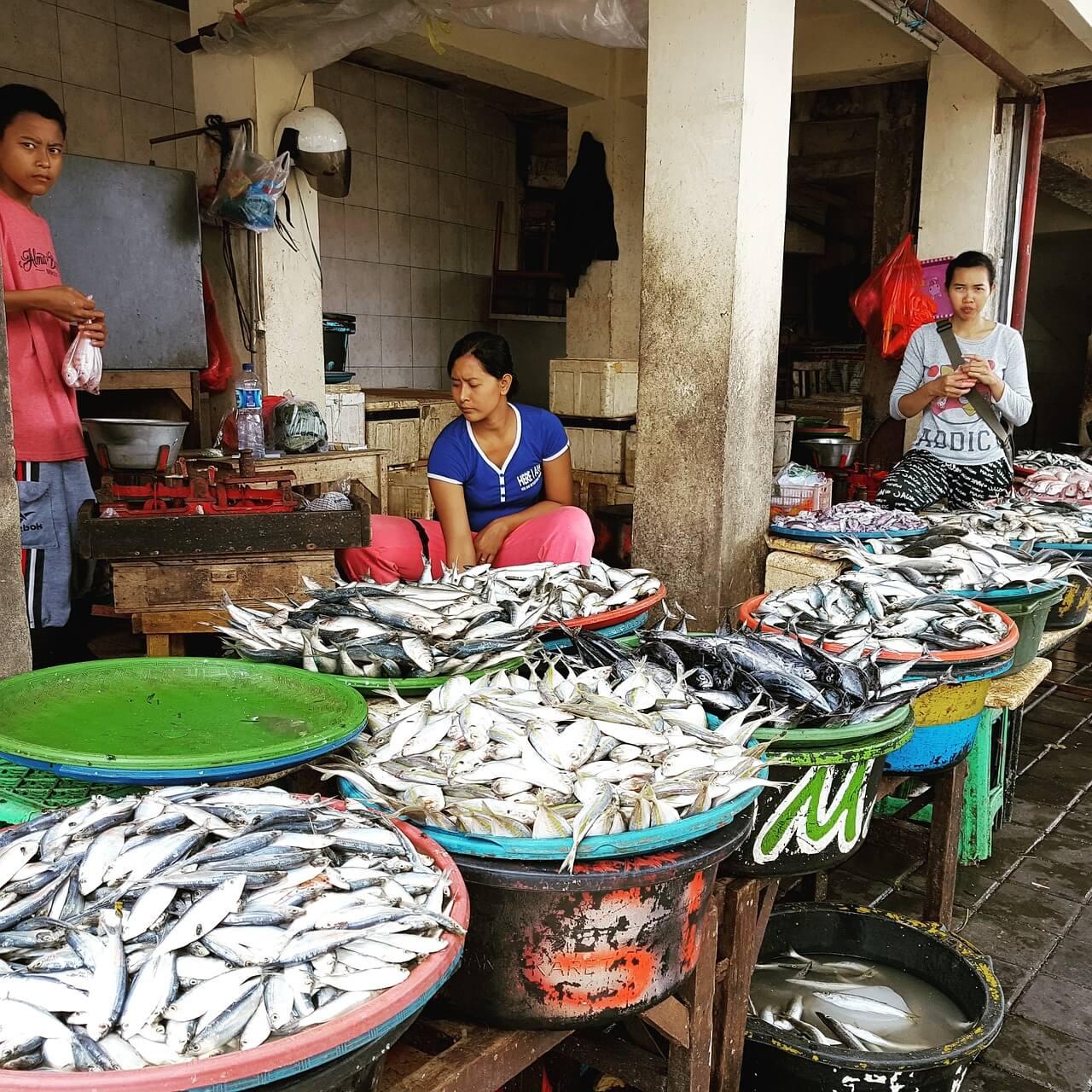 mercado de peixe de jimbaran