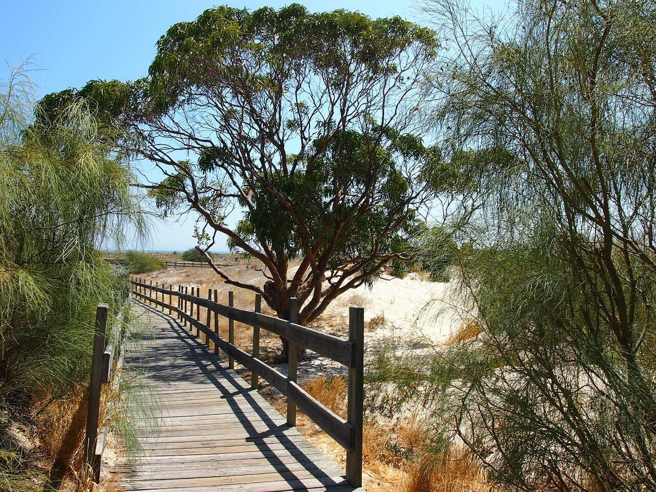 praia de troia roadtrip pela costa vicentina