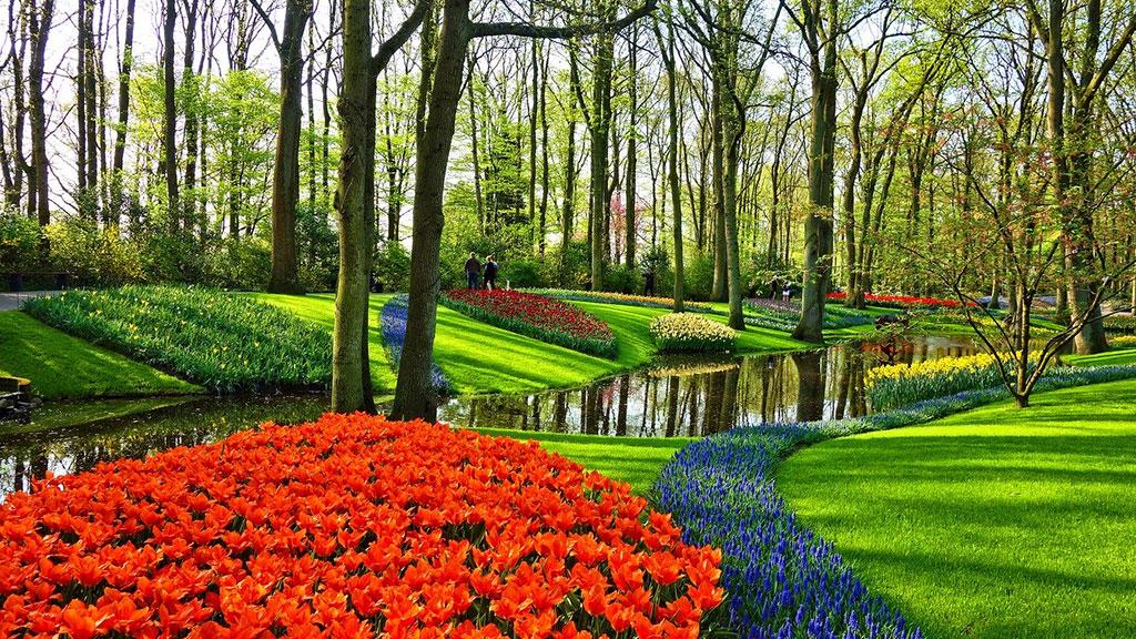 Keukenhof jardim Amesterdão