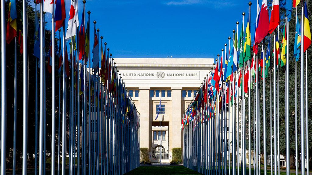 Nações Unidas Voluntariado