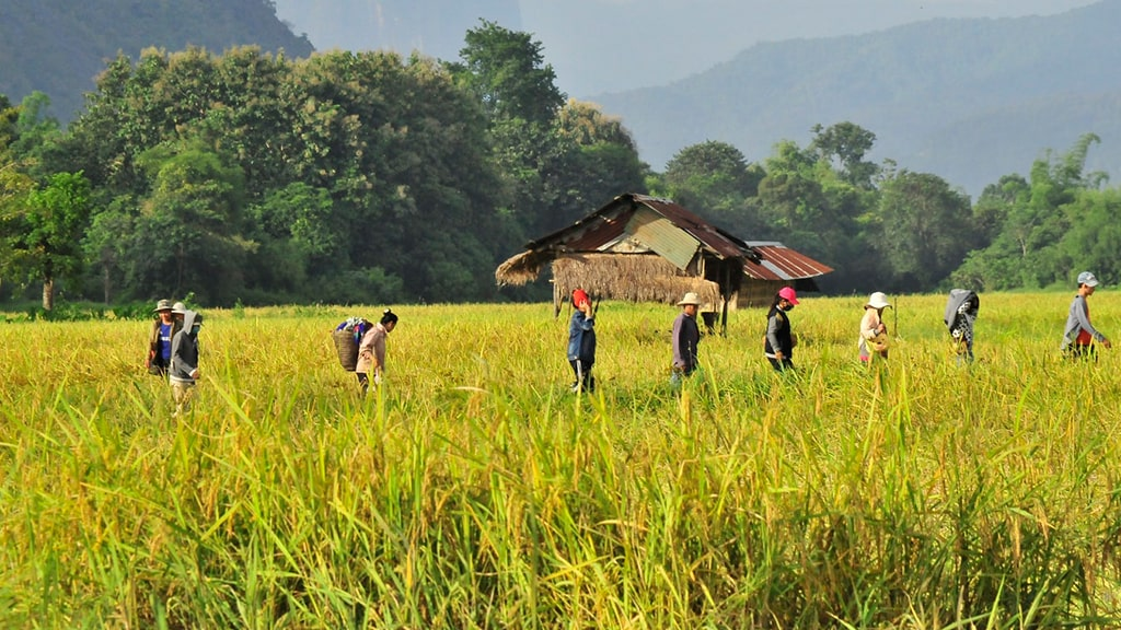 Laos País Rural Sudeste Asiático