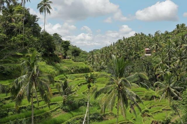 paisagens indonesia